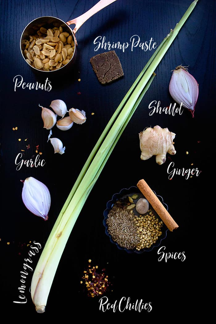 Ingredients for Thai curry paste